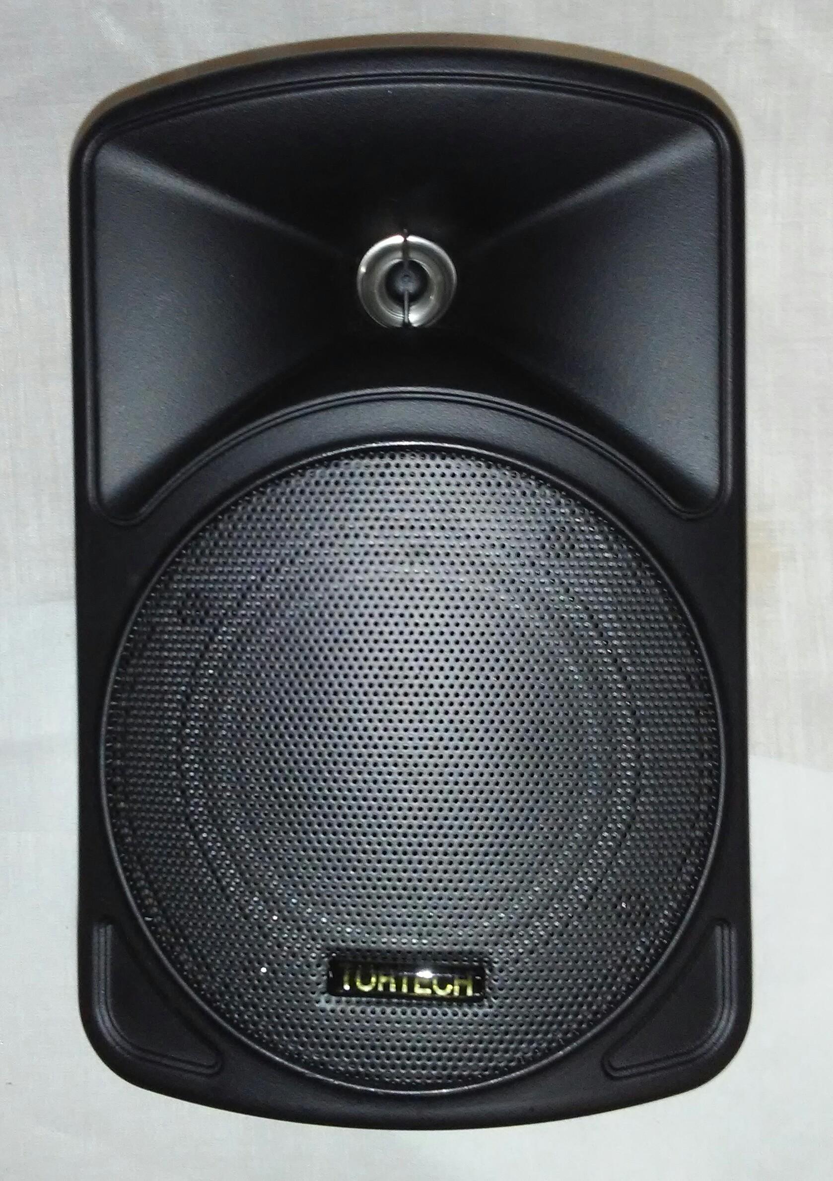 EMS40BL   16 Watt / 8 Ohm 2 Way Cabinet Speaker, Black