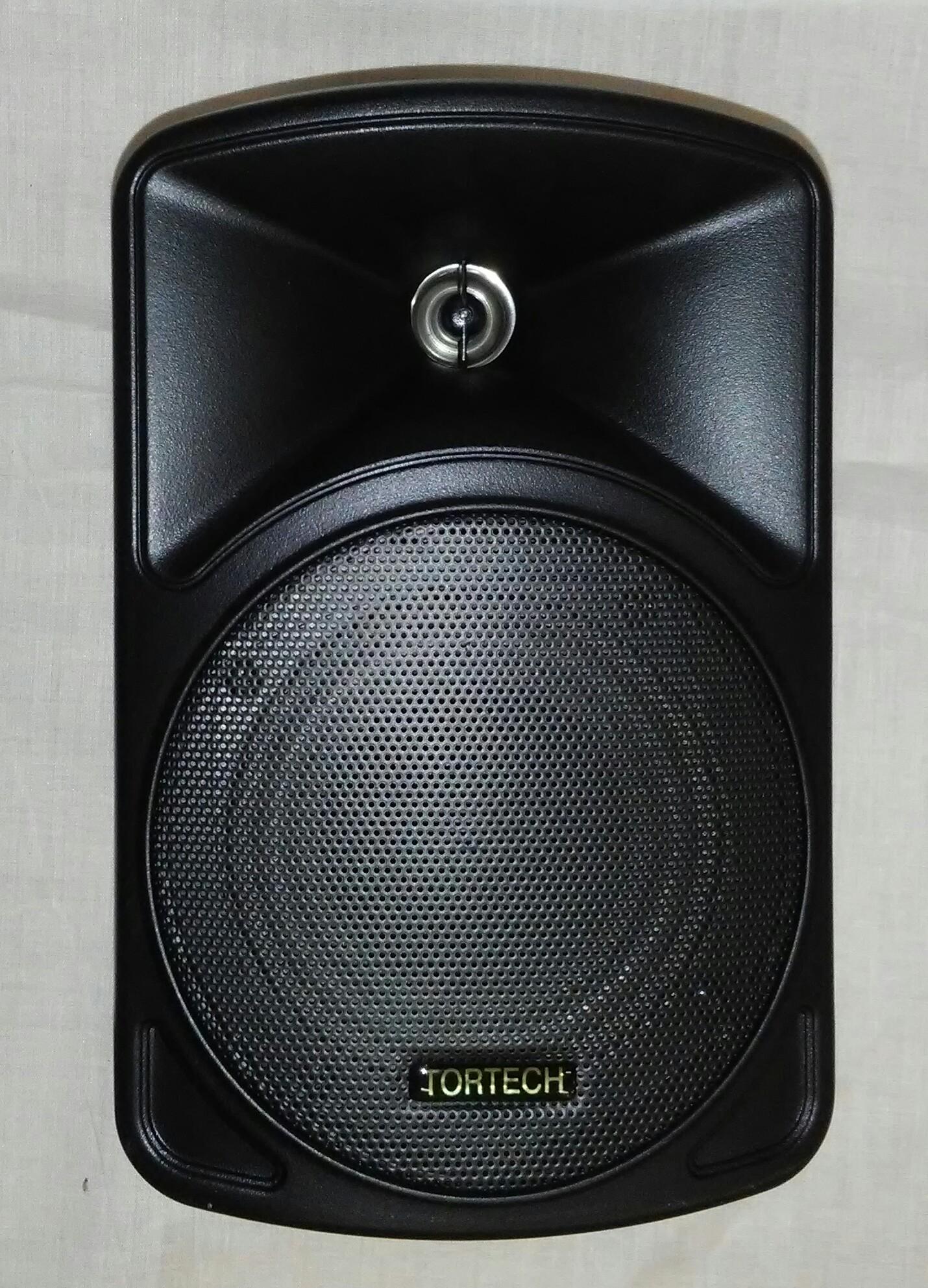 EMS40T   16 Watt / 70 Volt 2 Way Cabinet Speaker, Black